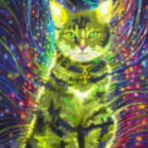 Profile picture of Cosmic Kitty